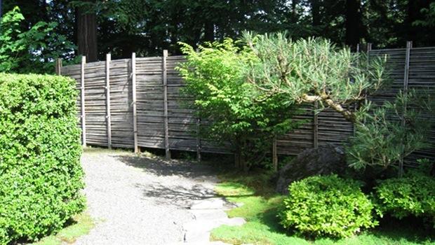 Séparation jardin: Infos, Prix & Conseils de choix de type