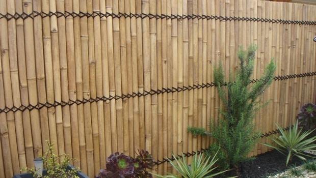 nattes bambou cloture